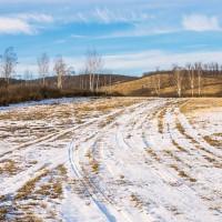 Малоснежная зима в Подмосковье / № 354
